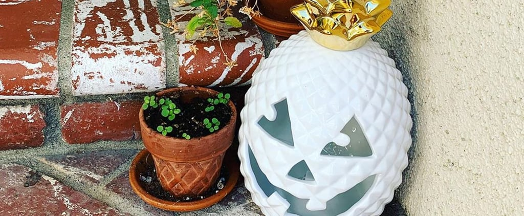 HomeGoods Halloween Pineapple Jack-o'-Lanterns