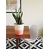 The find: a dip-dyed pot.