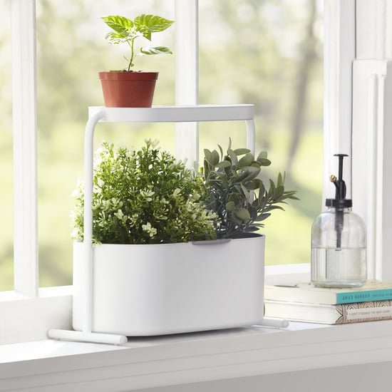 The Best Indoor Garden Kits