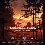 """A Thousand Years"" by Christina Perri"