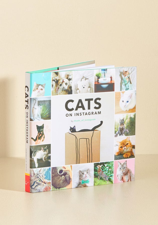 Cats of Instagram ($17)