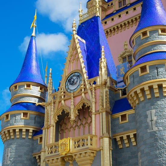 Here's Why There Are No Mosquitoes at Disney World