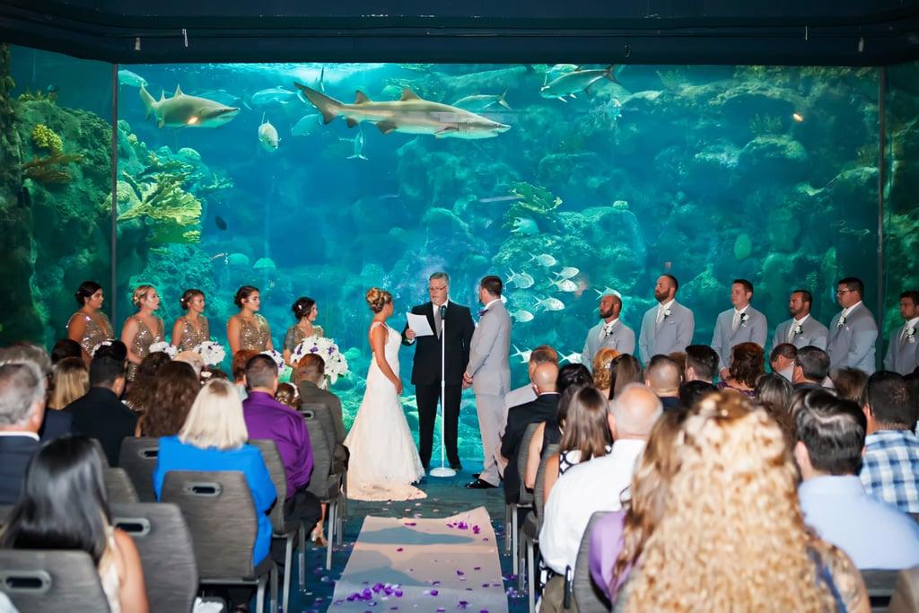 Aquarium Wedding | POPSUGAR Australia Love & Sex Photo 42