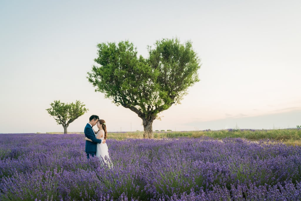 Engagement Shoot in Lavender Fields of Provence, France