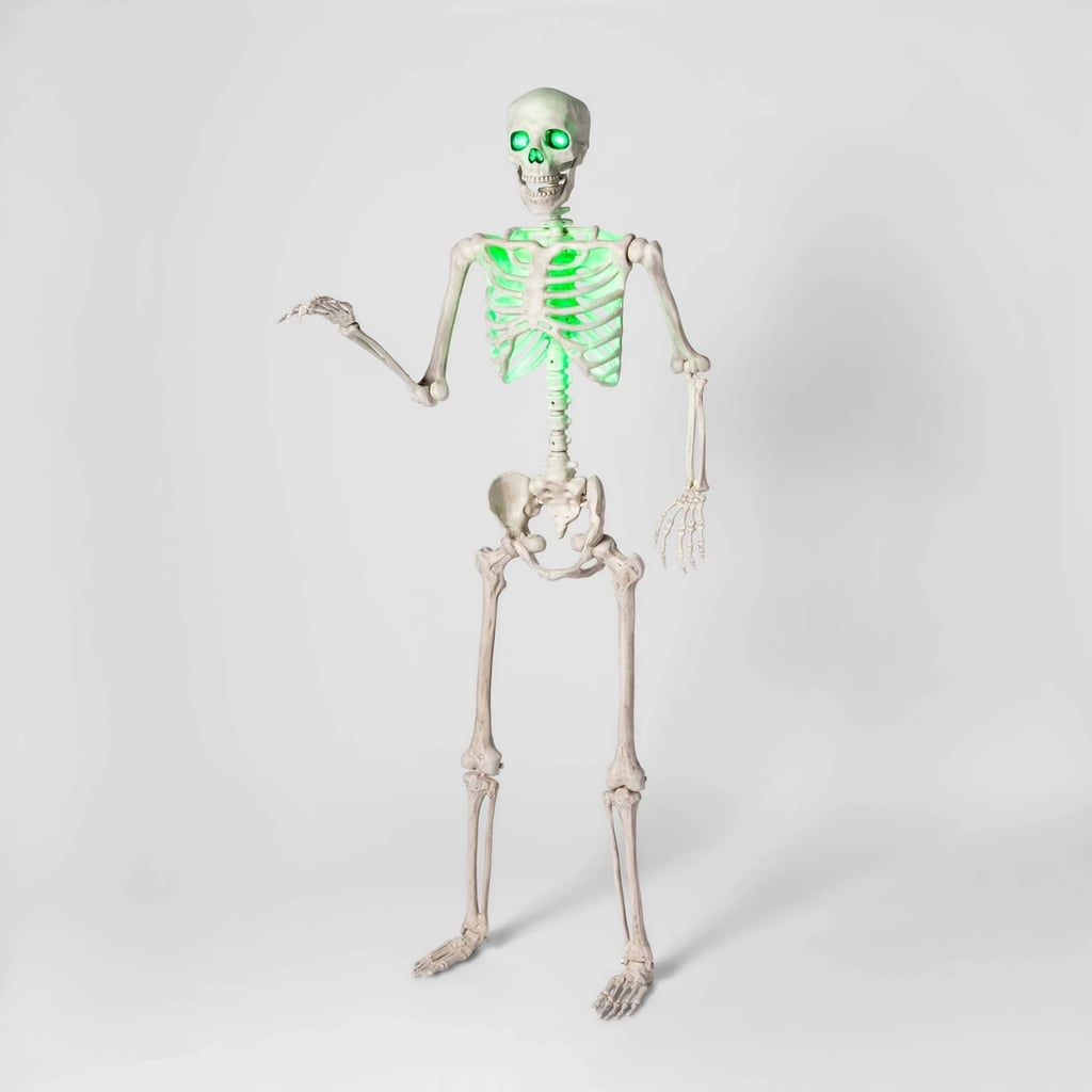 Light-Up Lifesize Posable Skeleton