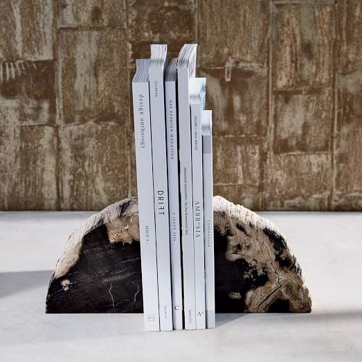 Bonnie: Petrified Wood Bookends