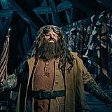 And Here's a Peek at What Hagrid Looks Like!