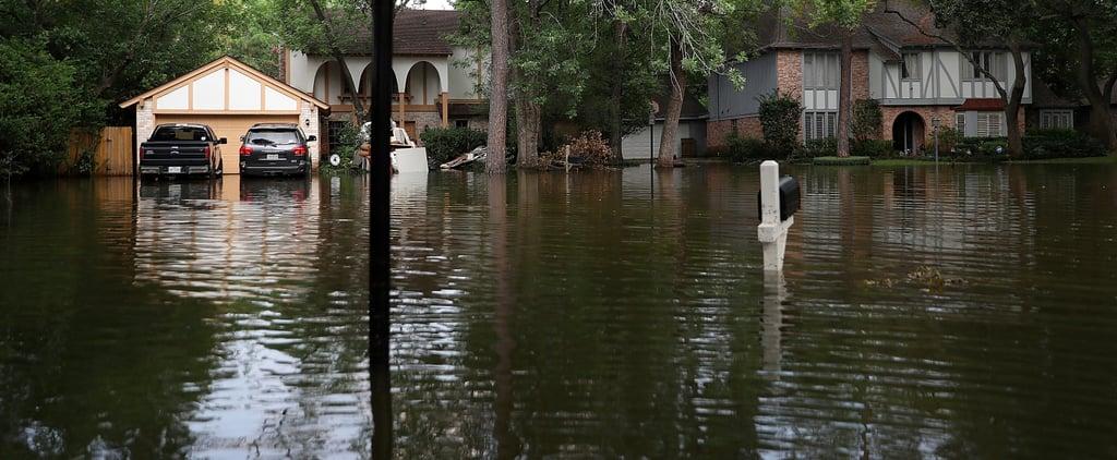 Personal Essay on Hurricane Harvey in Houston, TX