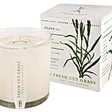 Dot & Bo Clipped Grass Scented Soy Candle ($34)