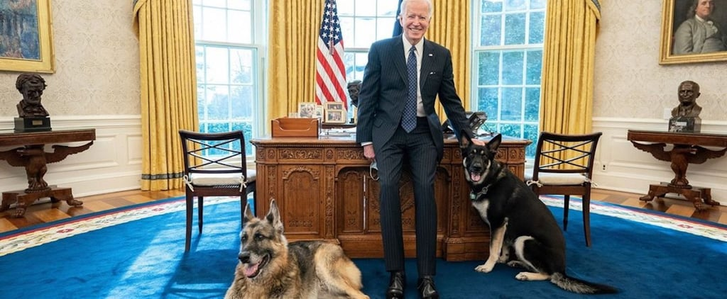 See Champ and Major Biden's First Oval Office Photo