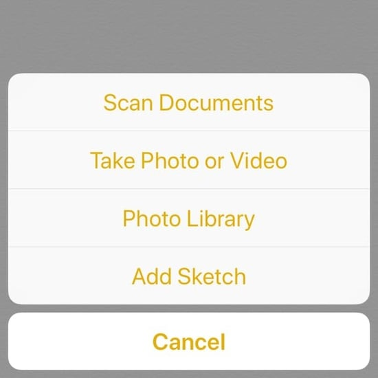 How to Scan Documents on an iPhone Using the Notes App