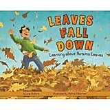 Leaves Fall Down