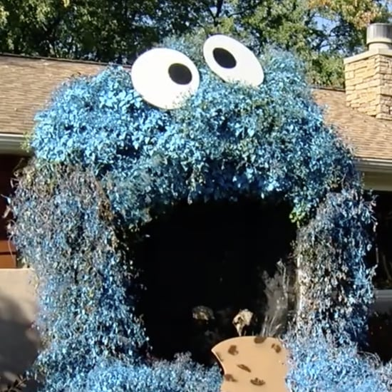 Woman Decorates Front Door to Look Like Cookie Monster