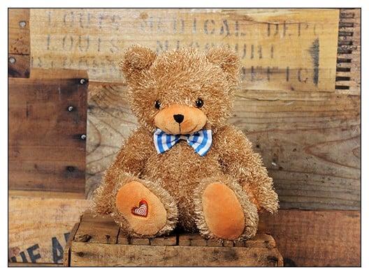 My Baby's Heartbeat Bear