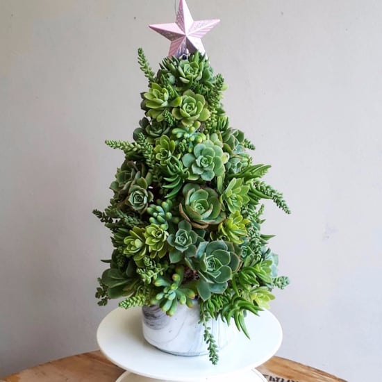 Succulent Christmas Tree Ideas