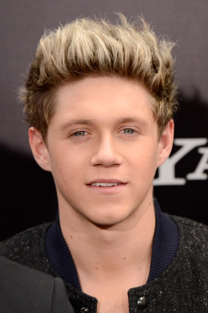 Niall Horan flashed a grin for the cameras at the NYC premiere of One Direction: This Is Us.
