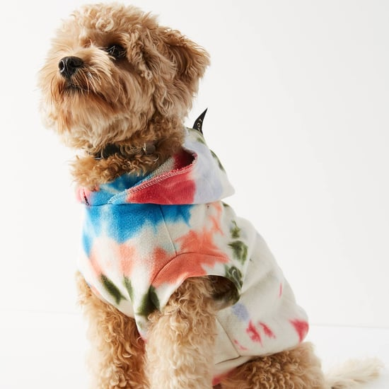 Best Dog Coats and Jackets | 2020