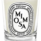 Diptyque Mimosa Scented Mini Candle (£24) will fill your living room with the scent of luxury.