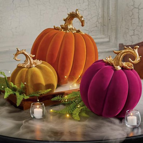 These Velvet Pumpkin Halloween Decorations Are So Elegant