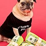 Bark Doggo Doggo Bills, Y'all Dog Toy