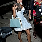 Elisabetta Canalis went all out as Dorothy from The Wizard of Oz and brought her own Toto along in LA in 2014.