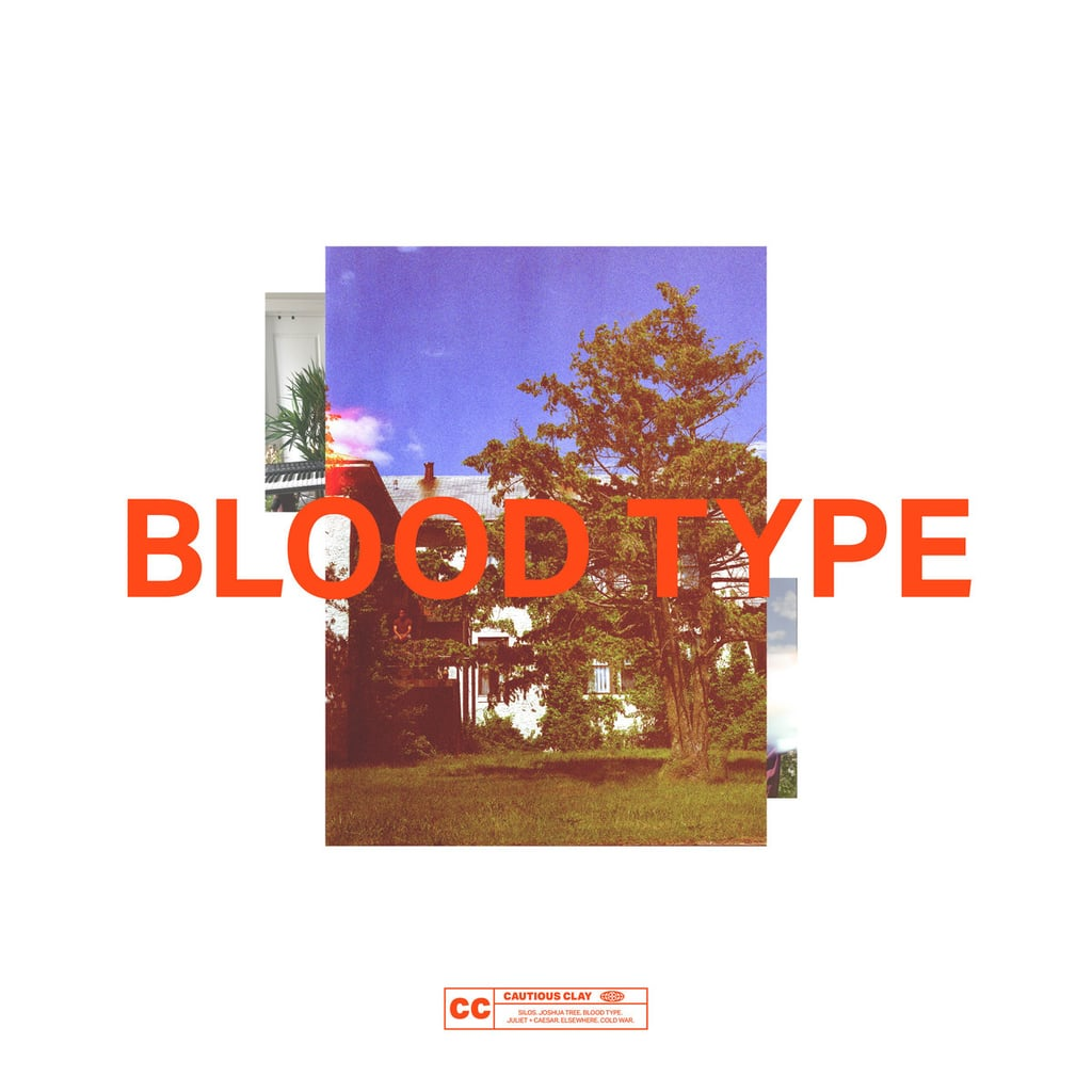 Blood Type by Cautious Clay