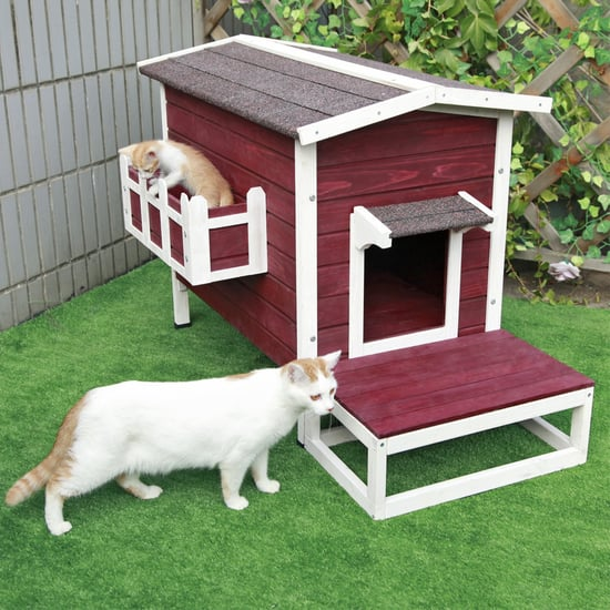 Petsfit Weatherproof Outdoor Cat Condo on Amazon