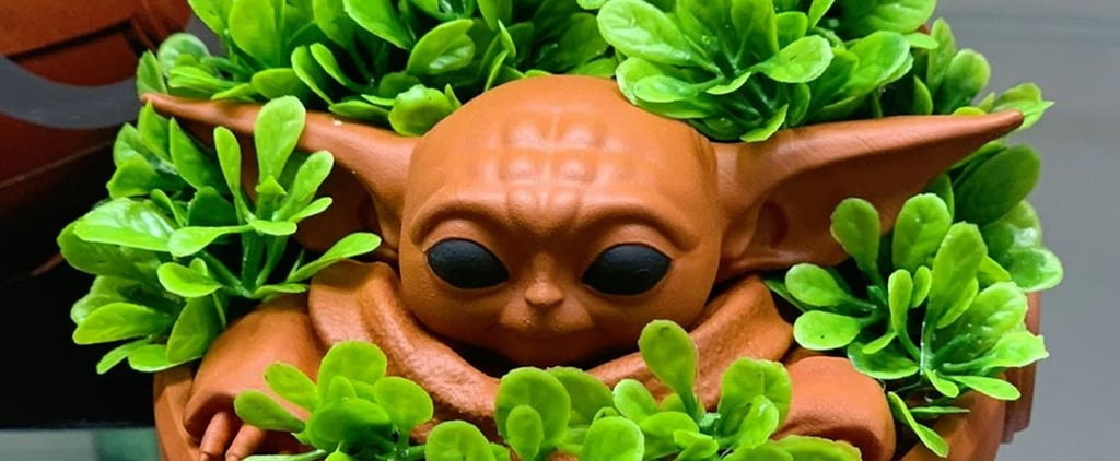 Baby Yoda Chia Pets Are Coming Out Soon
