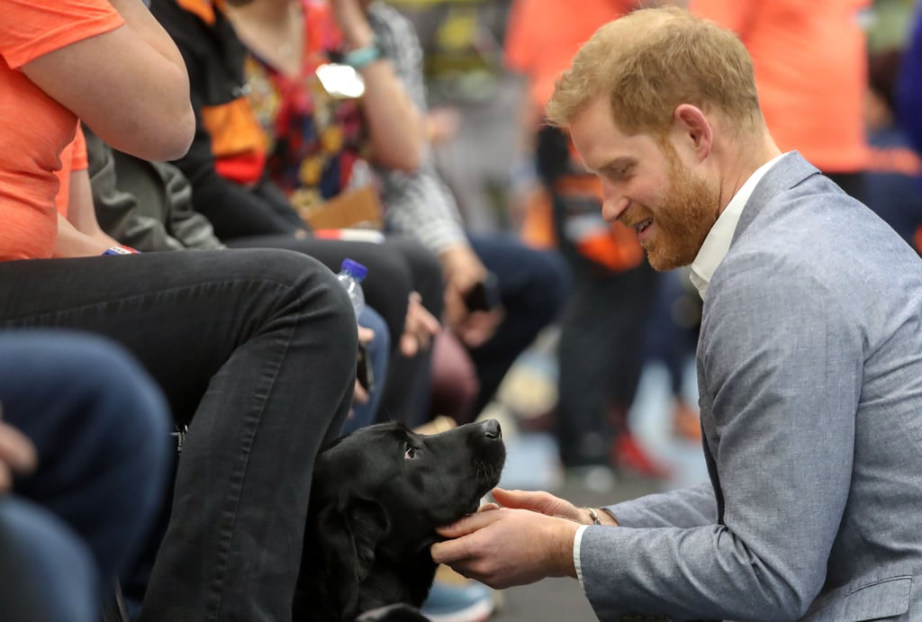 After a whirlwind day introducing his son, Archie, to the world, Prince Harry boarded a flight to the Netherlands for a short visit for the launch of the Invictus Games, of which he is founder and patron. Harry's trip was originally set to take place over two days and include a visit to Amsterdam but was quickly shorted to a single day's visit to The Hague.      Related:                                                                                                           We Didn't Think Prince Harry Could Get Sexier, but Bless 2019 For Proving Us Wrong               Though the trip was cut short, that didn't stop Harry from cramming in just about every activity possible. The visit was like a lesson in the ultimate Prince Harry royal appearance. He cuddled cute kids, got friendly with an adorable dog, hung out with army veterans, took part in sports, went on a walkabout, and pulled the sweetest faces on being presented with the cutest gift for baby Archie. Not enough? He also rode a bike, gave a speech, and admired a souped-up car. All this, and it's only lunchtime. Keep reading for a look at everything the prince managed to do on this busy day.