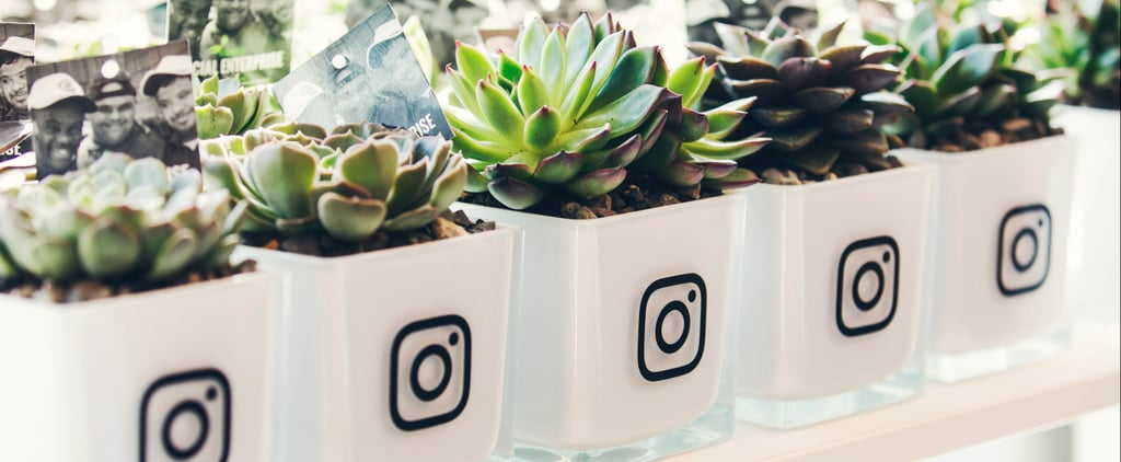 7 Reasons You'll Want a Job at the Instagram Dubai Office ASAP