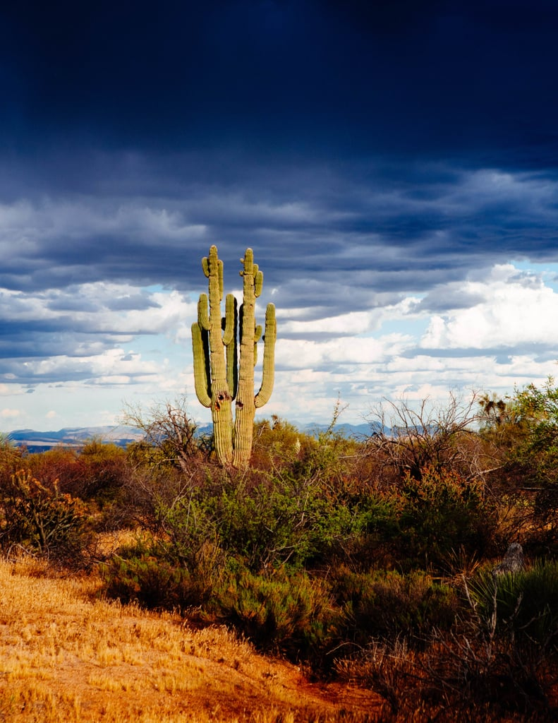Places to Visit in Phoenix and Scottsdale, AZ