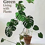 Sheridan Indoor Green Living With Plants ($49.99)