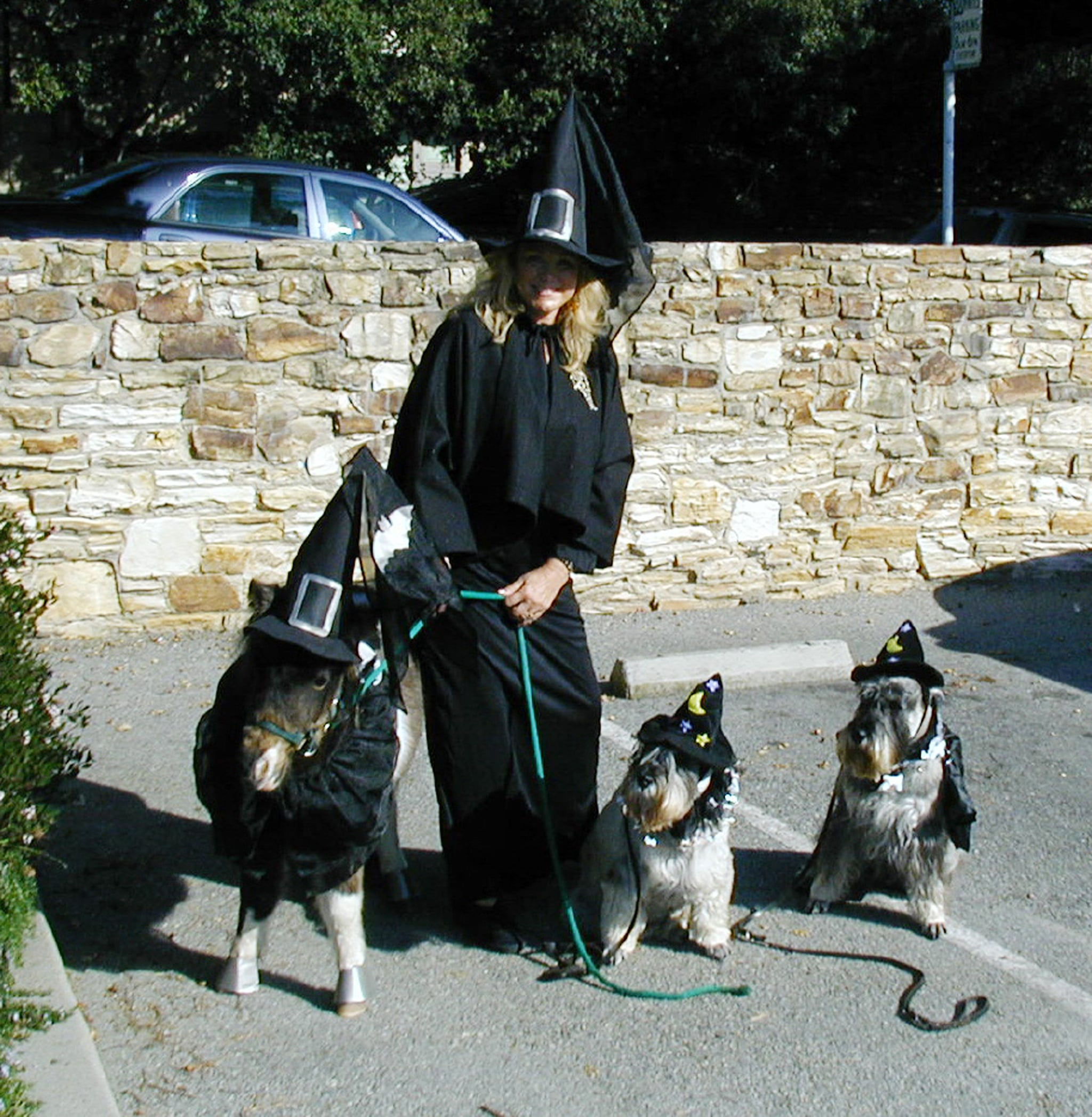 Four Lil Witches