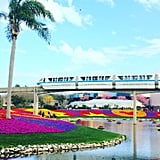 Ride the Monorail From Epcot to Magic Kingdom and Back