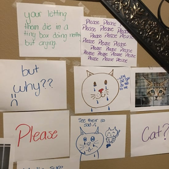 Girl Makes Wall of Sorrow to Convince Dad Get a Family Cat
