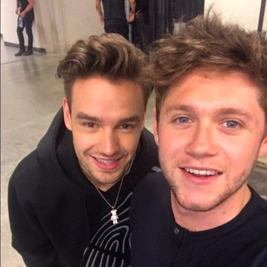 Liam Payne and Niall Horan Reunion at ZPL Birthday Bash 2017
