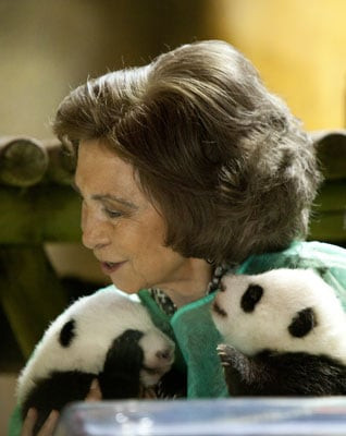 Pictures of Queen Sofia of Spain With Baby Pandas