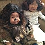 Chewbacca and Princess Leia