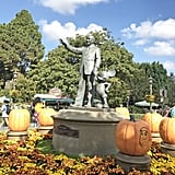 Walt and Mickey are surrounded by carved pumpkins featuring your favorite characters.