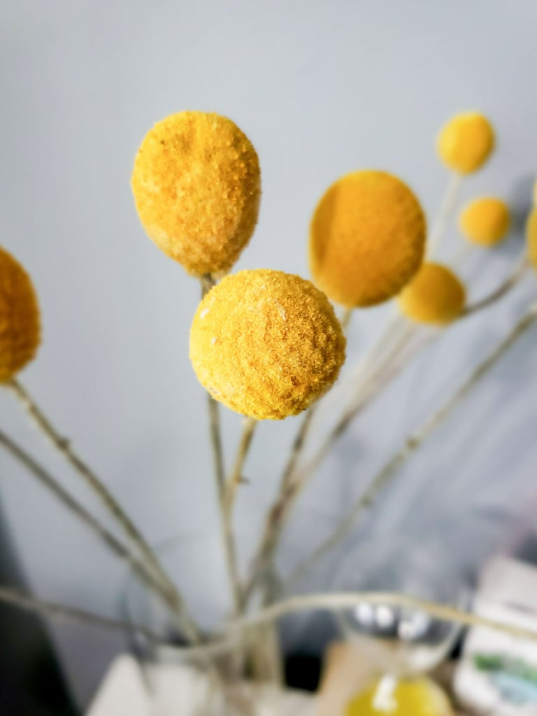 Dried Real Natural Billy Balls