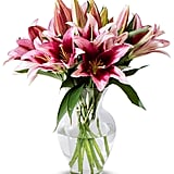 Benchmark Bouquets Stargazer Lily Bunch
