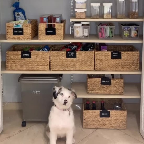 Pantry-Organization Ideas From TikTok