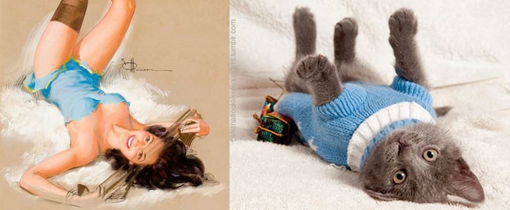 These Photos of Cats Posing Like Pinup Girls Are the Greatest Thing to Happen to the Internet
