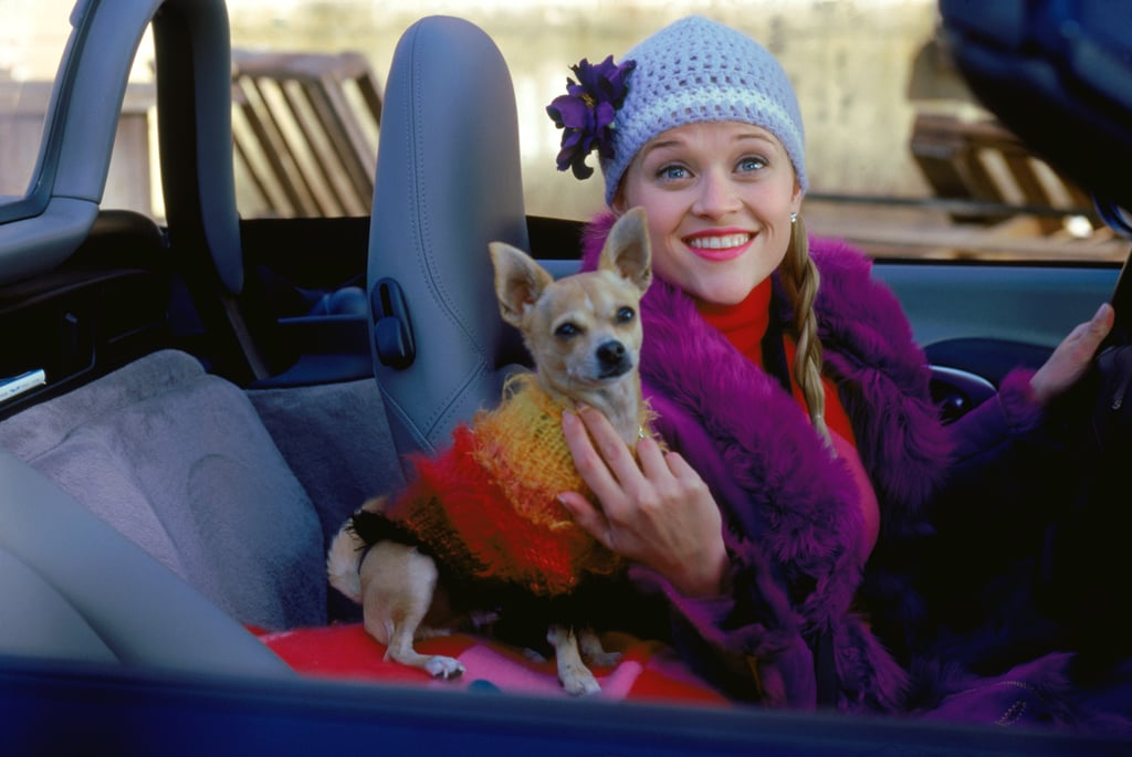 Reese Witherspoon's Best Outfits in Legally Blonde