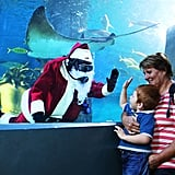 A scuba diver dressed in a Santa suit waved at a child in Australia's Melbourne Aquarium.