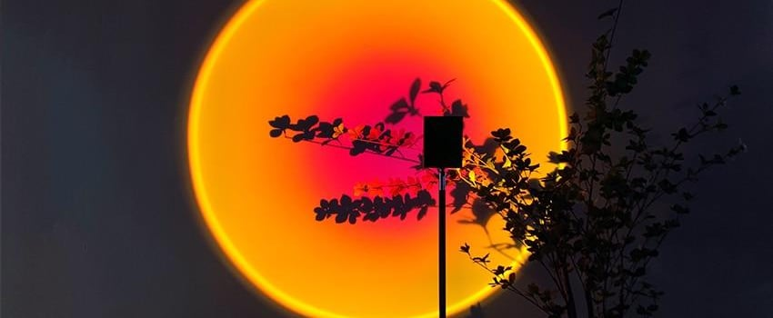 Shop the Sunset Lamp That's All Over TikTok