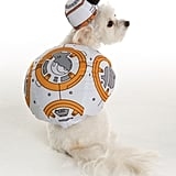 BB-8 of Star Wars