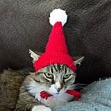Soft Handmade Crochet Knitted Cat Bonnet Hat