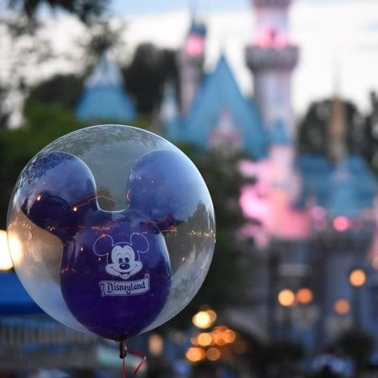 Disneyland Security Employee Secrets