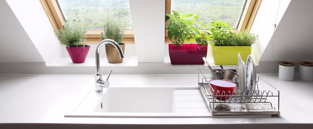 The Kitchen Tool That Has More Germs Than Your Toilet Bowl